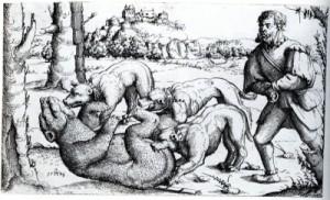 Bärenhatz, Radierung von Augustin Hirschvogel ca 1520-1553 - Quelle: Wikipedia