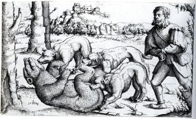 Bärenhatz, Augustin Hirschvogel