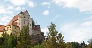 Burg Alzenau (ehemals Wilmundsheim vor der Hart)