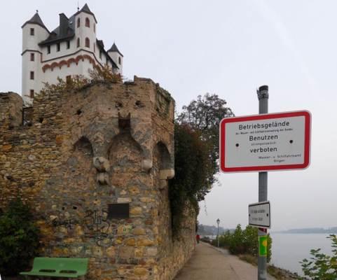 Leinpfad am Rheinufer in Höhe der kurfürstlichen Burg in Eltville
