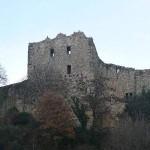 Burg Baden - Burgruine