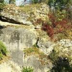 Burgruine Steinamwasser - Ansicht der Ruine von Süden