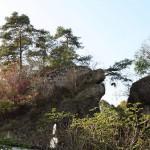 Burgruine Steinamwasser - Ostseite der Burgruine mit dem ehemaligen Zugang über die Schlucht