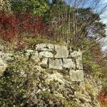 Burgruine Steinamwasser - Quader der südlichen Ringmauer