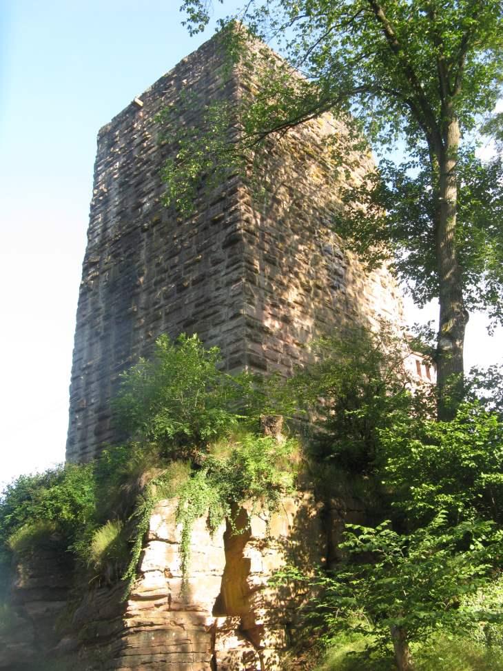 Burg Rieneck - Bergfried - Dicker Turm
