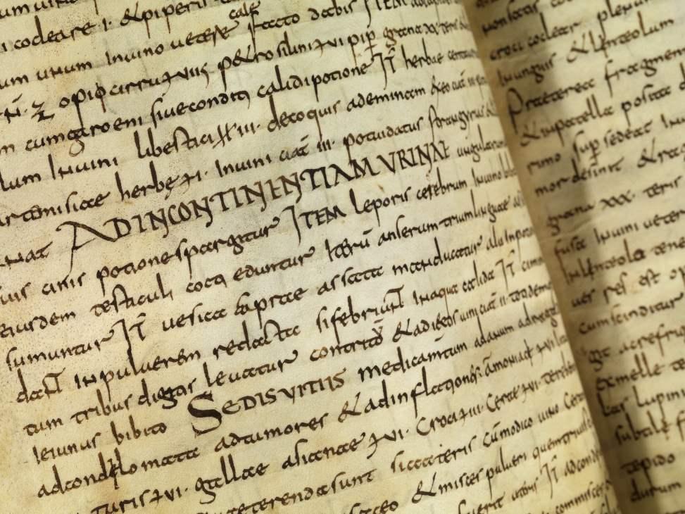 2_Das Lorscher Arzneibuch der Staatsbibliothek Bamberg_Textseite