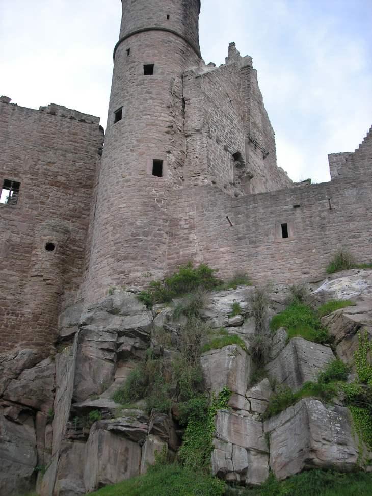 Fels und Burg Hanstein im Eichsfeld (Thüringen)