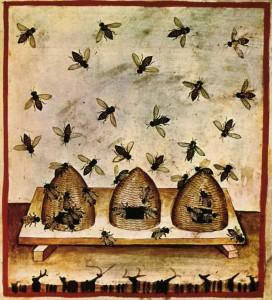 Bienenkörbe Tacuinum Sanitatis 15. Jahrhundert Quelle: Wikimedia