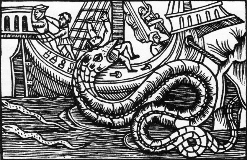 Seeschlange - Olaus Magnus Historia de Gentibus Septentrionalibus Rom 1555