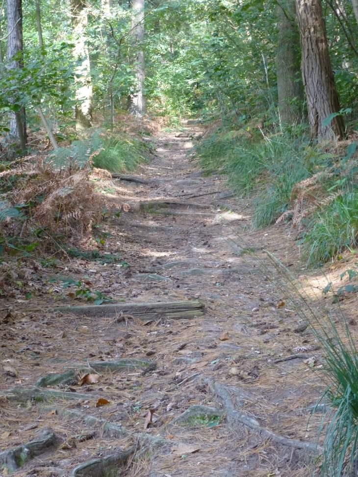 Wege und Straßen im Mittelalter