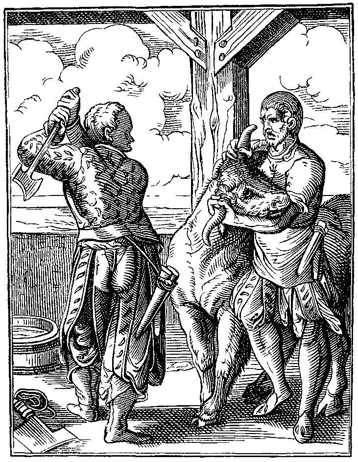 Metzger und Geselle bei der Schlachtung eines Hausrinds, Holzstich aus dem Ständebuch von Jost Amman, 1568 (Quelle: Wikipedia)